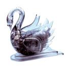 3D Головоломка Лебедь черный
