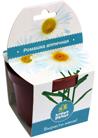 Набор для выращивания в горшочке Ромашка