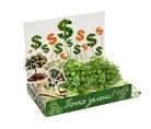 Подарочный набор Живая открытка Вырасти зелень